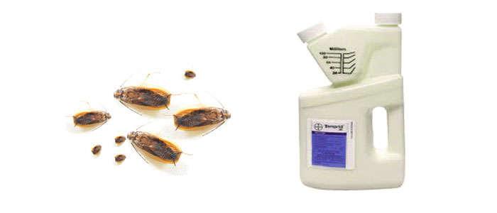 Insecticida polivalente con ciflutrina