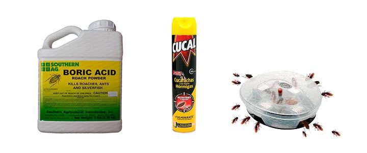 Insecticidas, repelentes y venenos para combatir y matar cucarachas