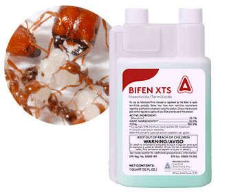 Bifentrina veneno líquido para hormigas