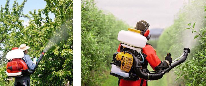 Fumigadoras de espalda a motor de gasolina