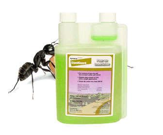 gamma-cyhalothrin es veneno para hormigas y cucarachas
